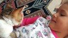 Elif ve minik kedimiz paticik sabah oyun keyfi eğlenceli çocuk videosu