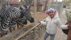 Antalya Hayvanat bahçesi gezintimiz, eğlenceli çocuk videosu
