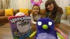 Hatchimals bebek ,     eğlenceli çocuk videosu