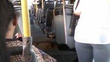 Ortadan İkiye Bölünen Körüklü Otobüs - Brezilya