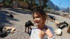 Köpek barınma evini ziyaret ettik, eğlenceli çocuk videosu