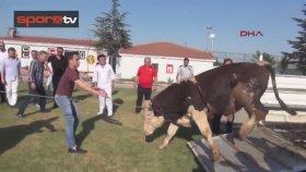 Eskişehirspor Yönetimi Danadan Kaçtı