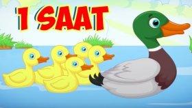 5 Küçük Ördek + En Sevilen Çocuk Şarkıları - 1 Saat Kesintisiz