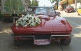 Klasik Otomobillerle Düğün Konvoyu