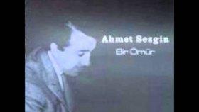 Ahmet Sezgin - Bir Sevenim Olmadı