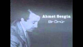 Ahmet Sezgin - Dargınlığı Sen Çıkardın