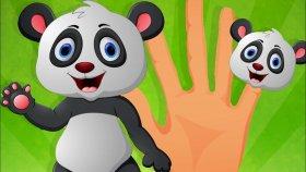 Parmak Ailesi - Orman Hayvanlarını Öğreniyoruz
