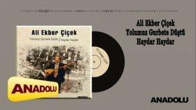 Ali Ekber Çiçek - Yolumuz Gurbete Düştü / Haydar Haydar (LP) Full Albüm