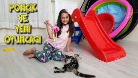 Kedimiz Kaydıraktan Kayıyor  Melikenin Ponçiğe Yaptığı Oyuncak !!