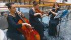 Ankarada Trio Grubu