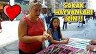 Sokak Hayvanlarına Mama İçin Kazı Kazan Oynamak ! Büyük Para Çıktı