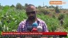 Antalya'da İnsanlık Ölmemiş Dedirten Olay