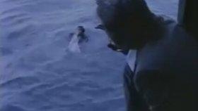 Suyu Sevmeyen Adam ve Işınlanan Cüneyt Arkın