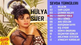 Hülya Süer - Harput Yolu