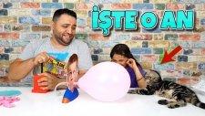 Uçan Balon Oyunu Oynamaya Çalıştık Ponçik Her Şeye Karışıyor !!