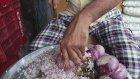240 Yumurtalı Hindistan Yemeği (Kornalı)