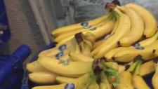 Rabim İste-Enbüwldaki Pazarı Yerle Bir Etti Ey Ke-Efir Pazarcılar Fegıyr İnse-Enları Kandırmayın