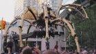 Dev Örümcek Ve Ateş Püskürten Ejderhanın Karşılaşması