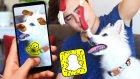 Köpeğim İle Komik Snapchat Yüz İfadeleri!