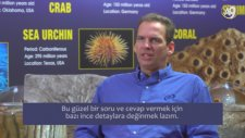 Dr. Jeff Zweerink: Ay Olmasaydı Yaşam Mümkün Olur Muydu?