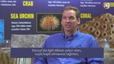 Dr. Jeff Zweerink: Dünya Özel Bir Gezegen Mi?