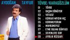 Aydoğan Tayfur - Ayrılık Rüzgarı