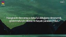 Ali Tel'den Kur'an Tilaveti