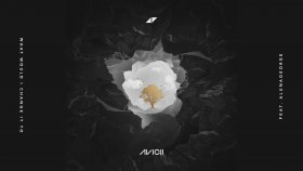 Avicii - What Would I Change It To (feat. AlunaGeorge)