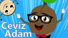 Ceviz Adam  | Çocuk Şarkıları | Bebek Şarkıları | Çizge TV Çocuk Şarkıları Dinle