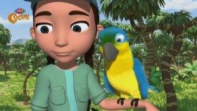 Çılgın Orman - Çevreci Dostlar Ormanda (Çizgi Film)