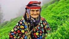 Kazım Koyuncu - Selimina