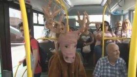 Geyik Dağdan İndi Otobüse Bindi