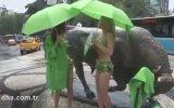 İstanbul'da Bikinili Eylem Yapan Kadınlar