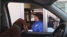 Bir Fast-food Markasına Köpekli Şaka Yapan Adam