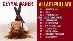 Seyyal Taner - Hadi Canım Sende