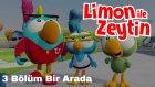 Limon ile Zeytin - Çok Eğlenceli 3 Bölüm Bir Arada | Çizgi Film