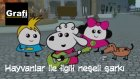 Bella Mella Mee | Hayvanlar ile İlgili Neşeli Şarkı