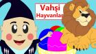 Vahşi Hayvanları Tanıyalım | Çocuklar için Türkçe Eğitici Çizgi Filmler