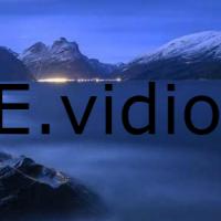 E.vidiom Kanalı