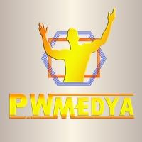 Pro Wrestling Medya Kanalı
