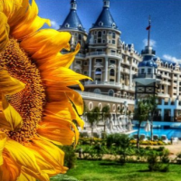 Haydarpasha Palace Hotel Kanalı