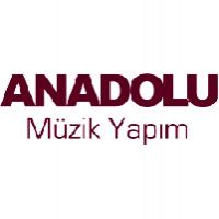 Anadolu Müzik